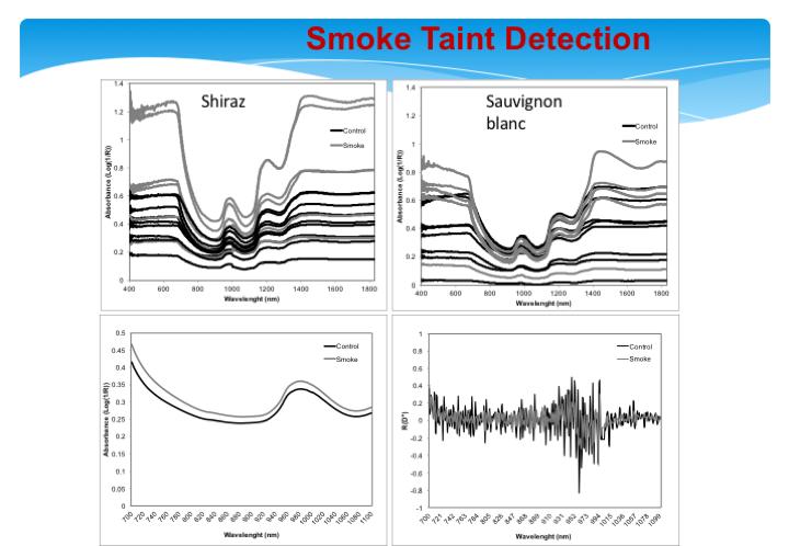 smoke-taintnir