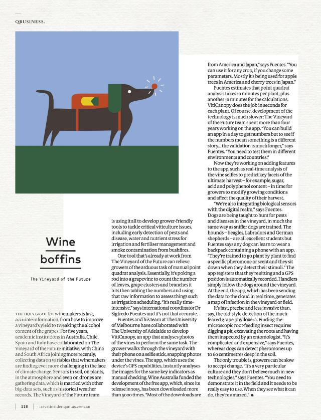 Qantas_Wine boffin article